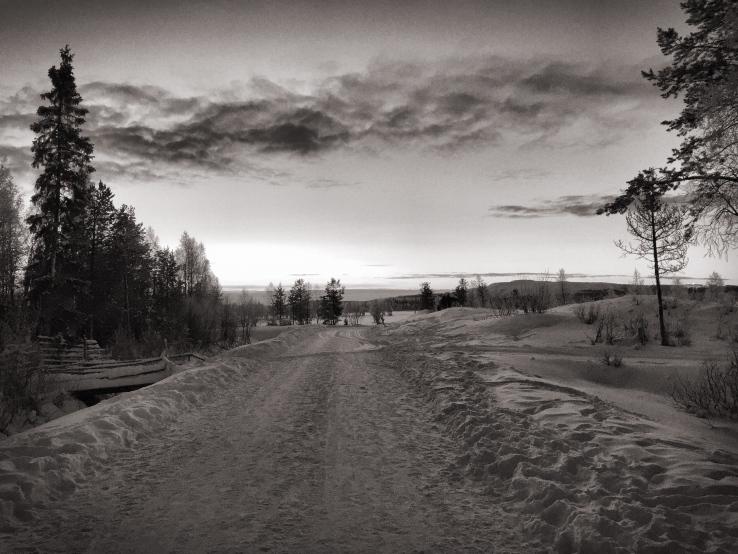 Lapland11