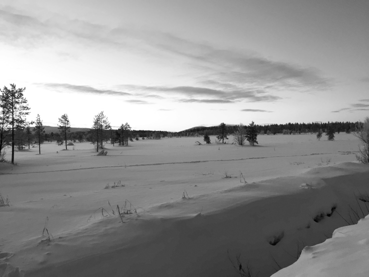 Lapland12